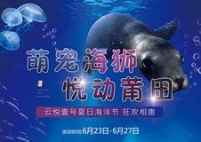 免费看|呆萌海狮秀,泡泡秀,3D海洋地画...