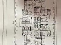 出售隆恒财富广场旁边苍口安置房3室2厅2卫121.46平米81万住宅