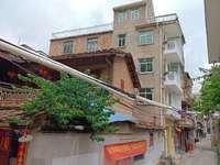 梅峰中山整栋5层 每一层有独立卫生间,步行街出行方便,每月租金可收四千